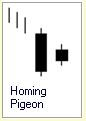 Candlestick Formation :: Homing Pigeon